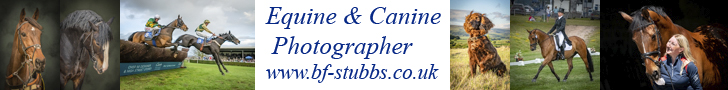 BF Stubbs Photography Website Advert image